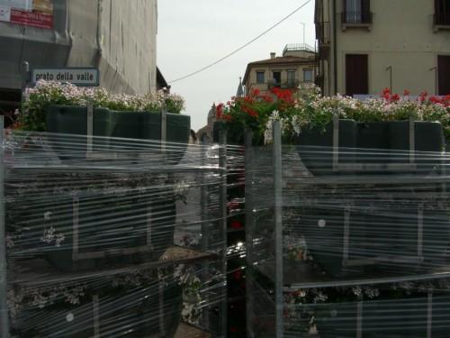 Comune di Padova spese inutili