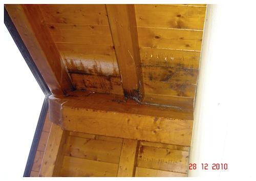 L 39 importanza della tenuta all 39 aria del tetto ricordate il for Tegole del tetto della casetta