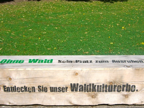 il verde - Il bosco non è solo una miniera di legno 10