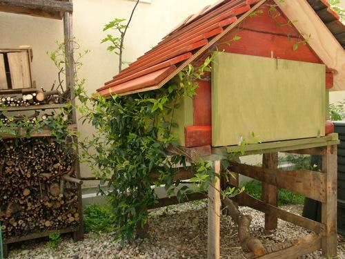 casa passiva galline