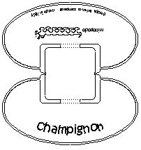 champignon design bettina strigl-01