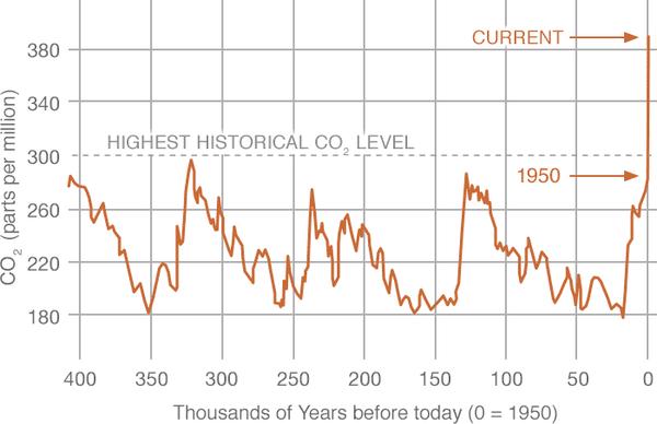 andamento livello di CO2