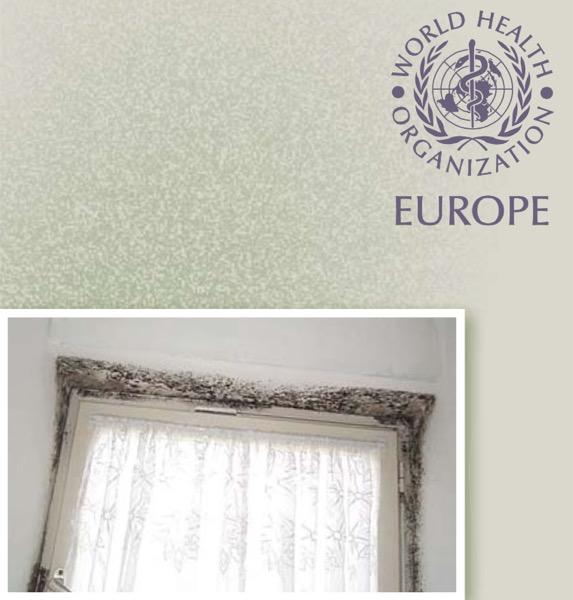 EDIFICIO & MUFFA : - Rapporto dell'Oms sulla qualità dell'aria negli ambienti chiusi 30