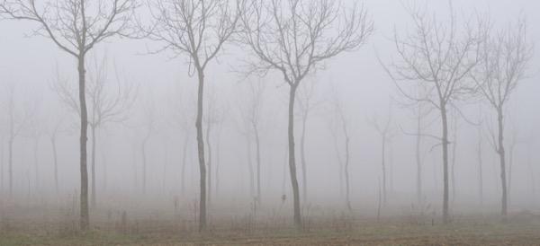 casa-isolamento-termico-clima-umido-nebbioso-tipico-pianura-padana-02