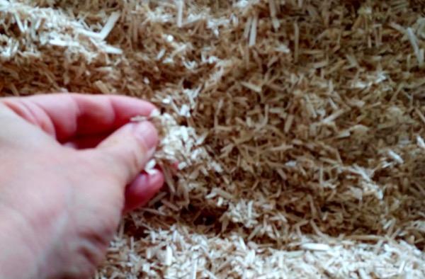 riqualificazione - Isolamento interno salubre? canapa e calce 4