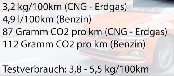 e-auto - Tesla Model 3 oppure Golf a metano? 12