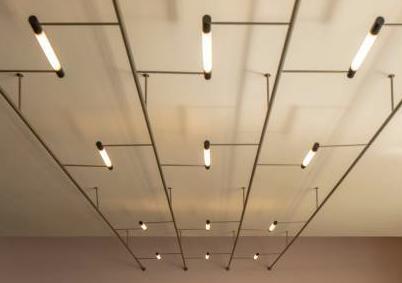 Architettura - 100 anni per il Bauhaus 50