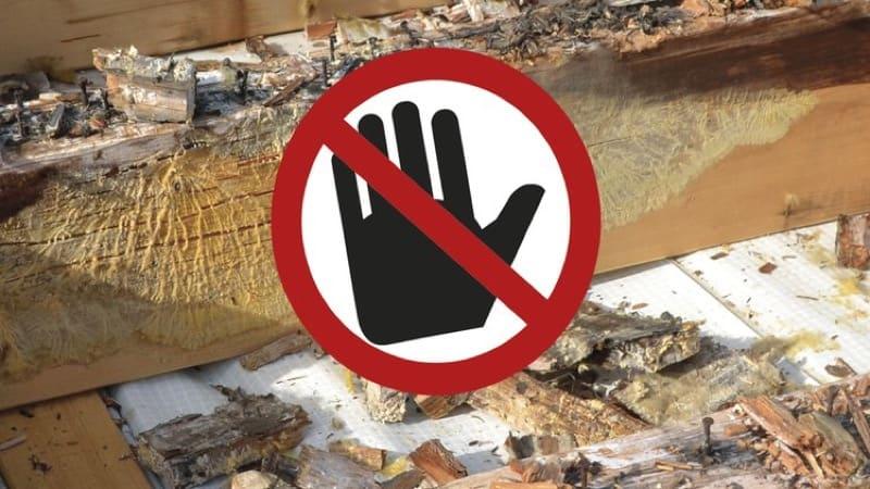 - Consulenza specifica per tetti in legno 22